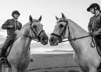 passeggiata a cavallo per principianti