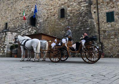 passeggiata in carrozza cavallonatura