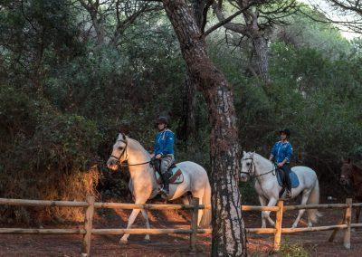 passeggiate a cavallo private