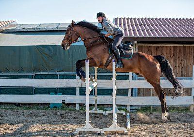 scuola di equitazione in maremma