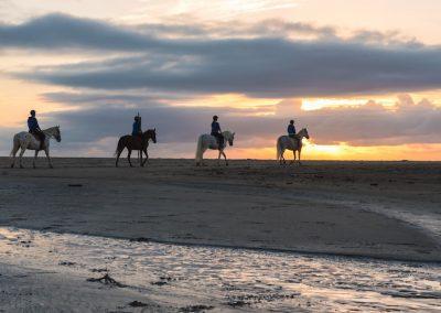 passeggiate a cavallo al mare