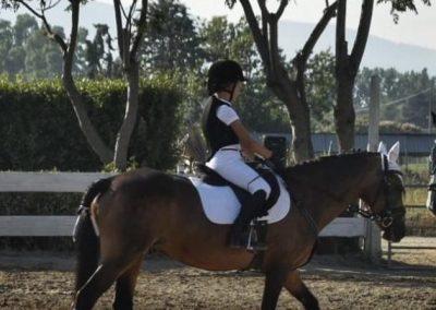scuola pony cavallonatura
