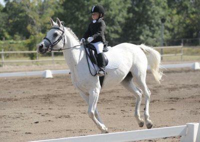 scuola corsi di equitazione per bambini